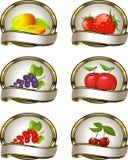 Ansammlung Kennsätze für Fruchtprodukte Stockbild