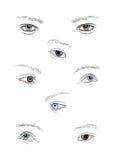 Ansammlung menschliche Augen Lizenzfreies Stockfoto