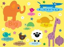 Ansammlung pädagogische Tiere für Kinder Stockbilder
