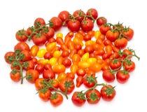 Ansammlung Tomaten Stockbild