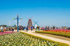 ANSAN, COREIA - 25 DE ABRIL: Festival das tulipas de Daebudo Foto de Stock Royalty Free