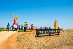 ANSAN KOREA, KWIECIEŃ, - 25: Daebudo tulipanów festiwal Obrazy Royalty Free