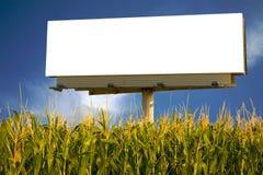 Anschlagtafel auf einem Gebiet von Mais Stockbild