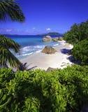 Anse严厉海滩,塞舌尔群岛 库存图片