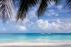 anse海滩拉齐奥热带的塞舌尔群岛 库存图片