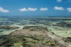 Anse银来源d的` -在热带海岛拉迪格岛上的美丽的海滩在塞舌尔群岛 免版税库存图片