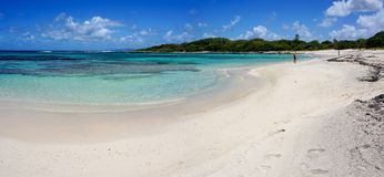 Anse àl'Eau i Guadeloupe Arkivbild