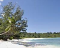 anse παραλία Λάτσιο Στοκ εικόνες με δικαίωμα ελεύθερης χρήσης