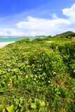 anse beach de Λουκία sables Άγιος Στοκ Φωτογραφίες