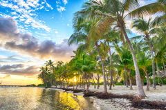 Anse Chamapgne Stock Images