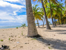 Anse Champagne Guadeloupe lizenzfreie stockfotografie