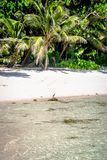 Anse Coco. In La Digue, Seychelles Stock Images