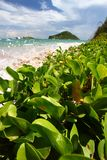 Anse de Sables Beach - le St Lucia Images stock
