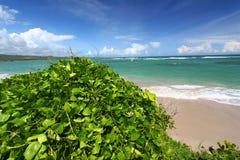 Anse de Sables Beach - le St Lucia Images libres de droits