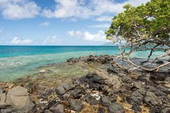 Anse Figuier在马提尼克岛 库存图片