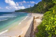 Anse Fourmis, Seychelles Fotografia Stock