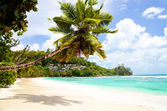 Anse Gouvernement em Mahe, Seychelles Imagens de Stock