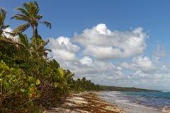 Anse Grosse Roche - Caraïbisch strand - Le Marin - Martinique royalty-vrije stock afbeeldingen