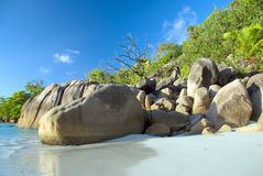 Anse Latium Images stock