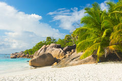 Anse Lazio Stock Photo