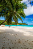 Anse Lazio, Praslin island. The Seychelles Royalty Free Stock Photos