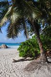 Anse Lazio, Seychelles, Praslin wyspa Obrazy Stock