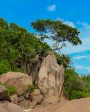 Anse magnífico en la isla de Digue del La en Seychelles foto de archivo