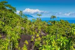 Anse Major Nature trail, Seychelles Stock Photography