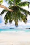 anse praslin του Λάτσιο νησιών Οι Σεϋχέλλες Στοκ Φωτογραφίες