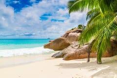anse praslin του Λάτσιο νησιών Οι Σεϋχέλλες Στοκ Εικόνα