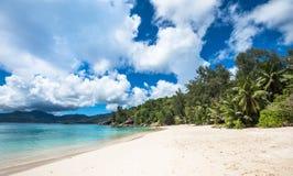 Anse Soleil热带海滩, Mahe海岛,塞舌尔群岛 免版税库存图片