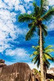 Anse Source d'argent, La Digue island. The Seychelles Royalty Free Stock Photo