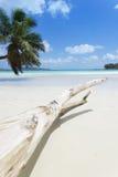 Anse Volbert, Seychellen Stockfotos