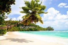 ansegouvernementmahe seychelles Arkivbilder