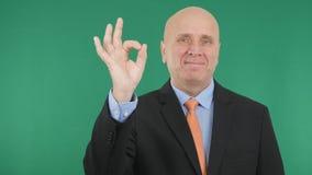Ansehnlicher Manager Smile und O.K. Handzeichen machen stockfotografie