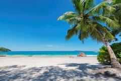 Anselazio strand en het turkooise overzees op Paradijseiland stock afbeelding
