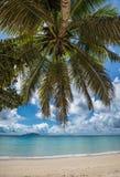 Anse花花公子Vallon热带海滩, Mahe海岛,塞舌尔群岛 免版税库存图片