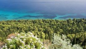 Ansicht über adriatisches Meer und Zypresse von Peljesac-Halbinsel nahe Orebic, Dalmatien, Kroatien Lizenzfreie Stockfotos