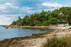 Ansicht über adriatisches Seebucht mit Kiefern in Istria kroatien Schöner Strand mit Ruhesesseln und Regenschirmen Lizenzfreie Stockbilder
