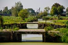 Ansicht über Baumbrücken über einem Abzugsgraben Stockbilder