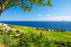 Ansicht über blaues adriatisches Meer und grünes Feld auf Peljesac-Halbinsel, Dalmatien, Kroatien Lizenzfreies Stockfoto