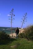 Ansicht über Canos, Spanien lizenzfreies stockbild