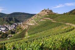 Ansicht über das Dorf von Mayschoss und von Weinbergen, Deutschland Lizenzfreies Stockfoto