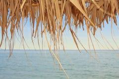 Ansicht über das Meer durch trockene Blätter Lizenzfreies Stockfoto