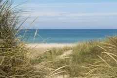 Ansicht über das Meer von den Dünen bedeckt in lyme Gras Lizenzfreies Stockfoto