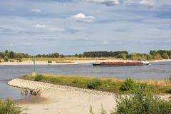 Ansicht über den Fluss Waal und das Millingerwaard, nahe Nijmegen, den Niederlanden mit Schiff und Equus caballus caballus stockbild