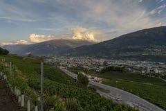 Ansicht über den Weinstock auf dem RhÃ'ne-Tal nahe Sion, stockbilder