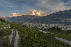 Ansicht über den Weinstock und das it& x27; s-bisse auf dem RhÃ'ne-Tal nahe Sion lizenzfreie stockfotografie