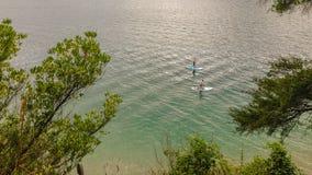 Ansicht über die Bucht von Picton-Hafen, Südinsel von Neuseeland lizenzfreies stockbild