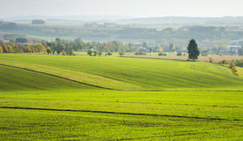 Ansicht über die Felder Stockfoto
